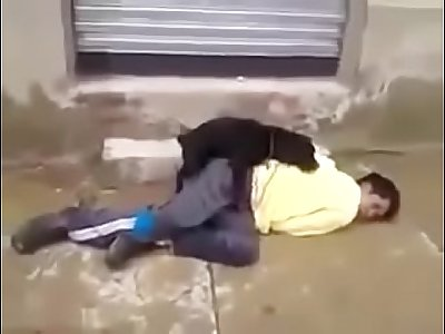 Dog fuck a sleeping man on road
